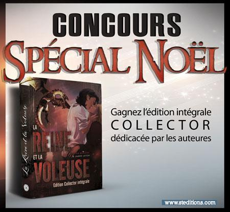 Noel Sted2016 Concours Site